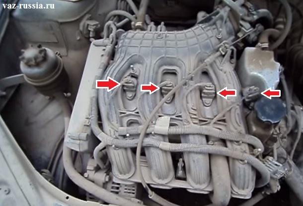 Стрелками указаны модули зажигания которые входят в отверстия в головке блока и уже там подсоединяются к самим свечам