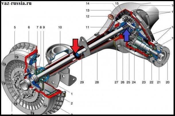 Схема редуктора заднего моста показана на фото, но только его правая часть показана (По ходу движения автомобиля смотрите) но а левая абсолютно идентична
