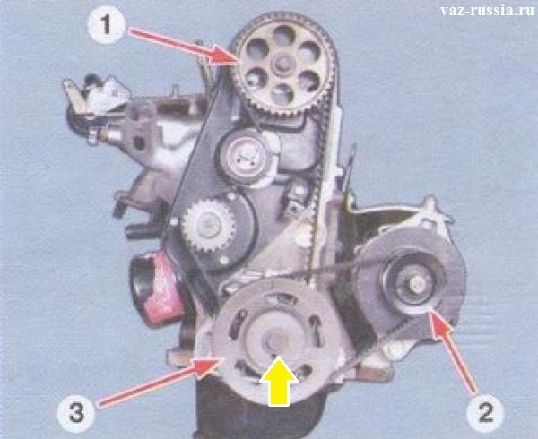 На данном фото для удобства показан снятый с автомобиля двигатель, а так же показаны все шкивы газораспределительного механизма, такое фото на установленном двигателе не когда не сделаешь и поэтому для удобства, фото сделано на снятом двигателе, у вас же он установлен и поэтому до самого нижнего шкива коленвала, будет не просто подлезть, дадим совет, легче всего с нижней части к нему подлезать предварительно сняв защиту картера с автомобиля