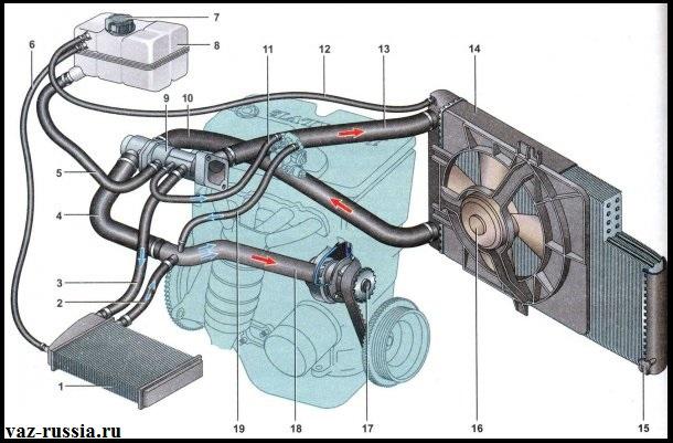 Схема системы охлаждения на автомобиле Лада Приора