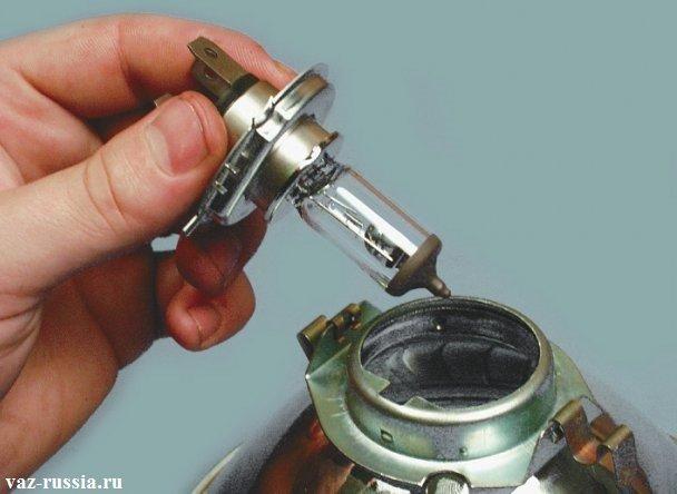 Извлечение лампочки из фары после отгибания защёлок которые её крепят
