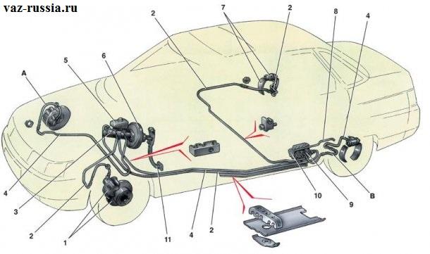 На данной фотографии показана схема тормозной системы, а именно из чего она состоит и где все её состоящие находятся