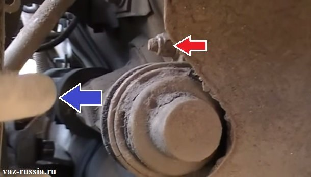 Пружина телескопической стойки показана синей стрелкой и гайка крепления рейки показана красной стрелкой