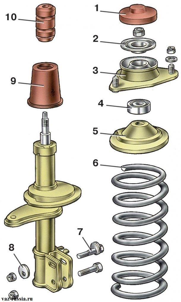 На фотографии изображена схема передней телескопической стойки
