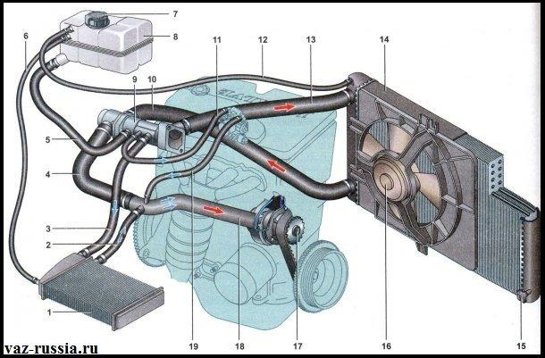 Система охлаждения автомобиля Лада Приора показана на фото