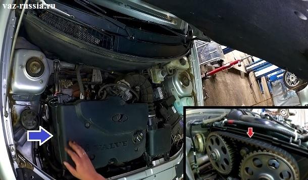 Стрелками указано местонахождение ремня ГРМ в автомобиле